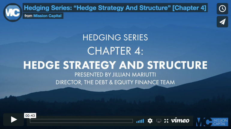 "Featured image for Hedging Series: ""Hedge Strategy And Structure"" [Chapter 4]"